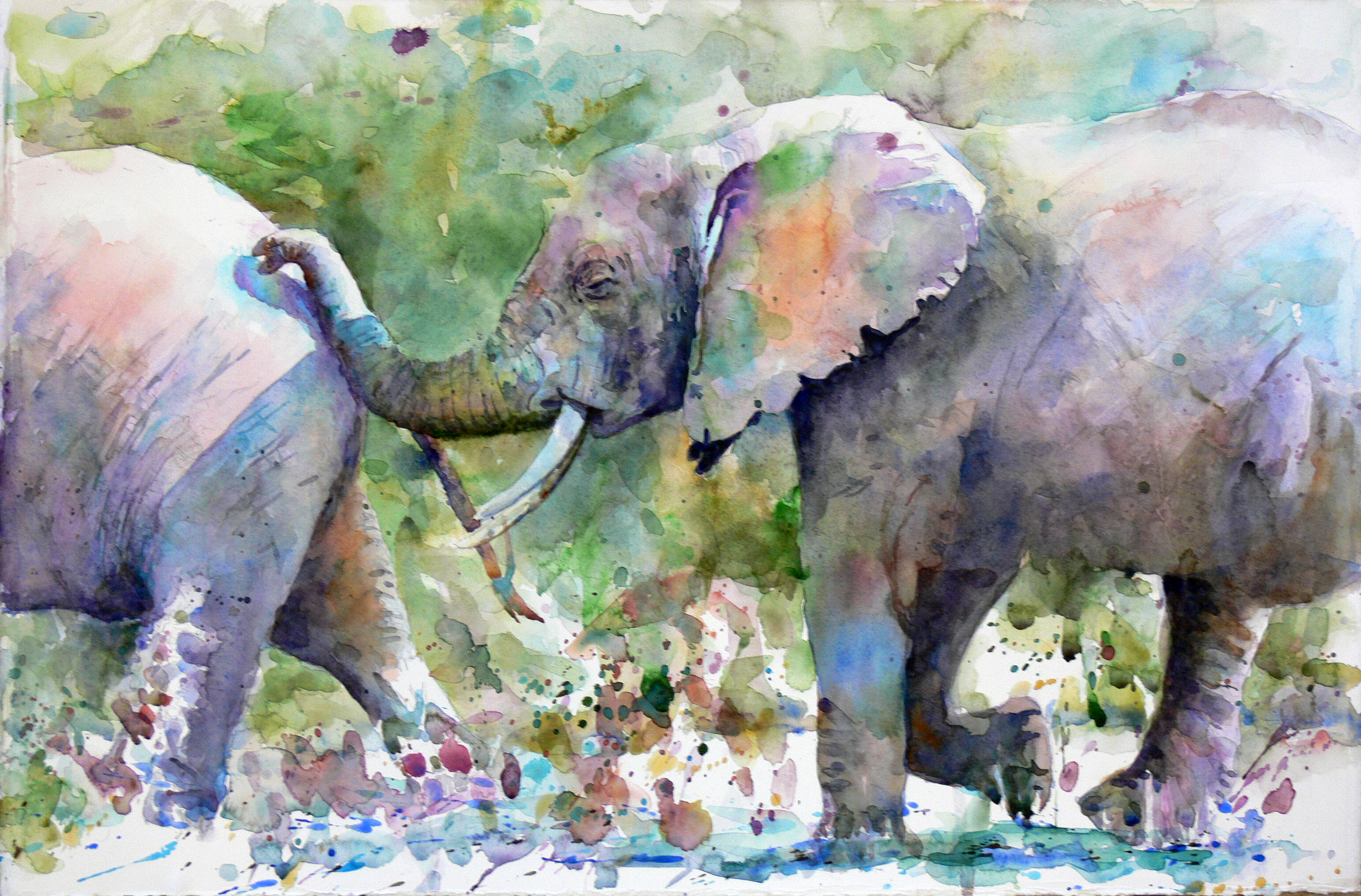 watercolor animal paintings animals expressive artist johnson watercolour artists painting catalog watercolors creating adult academy kim outreach programs workshop youth